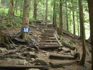 Grouse Grind - Everyone's done the Grouse Grind, no need to give this a thorough review. It's the most common hike in Vancouver. When you ask people if they want to go hiking, this is the first hike they mention; which makes no sense cause this hike doesn't have a nice view, it's more of an exercise.